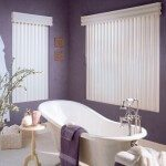 ny Vertical Blinds